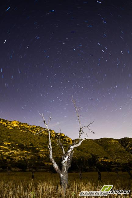 Nocturnas en la sierra de Crevillent